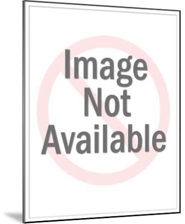 Endless Summer II-Lanie Loreth-Mounted Premium Giclee Print