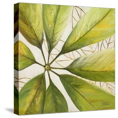 Fresh Leaves II-Patricia Pinto-Stretched Canvas Print