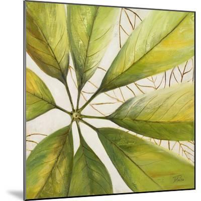 Fresh Leaves II-Patricia Pinto-Mounted Premium Giclee Print