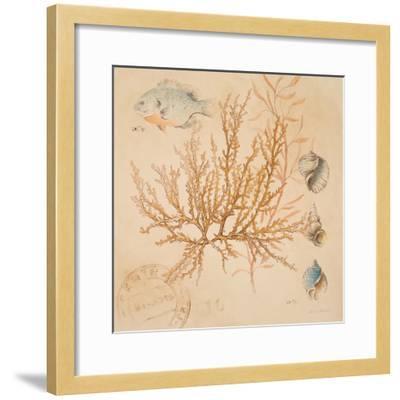 Coral Medley I-Lanie Loreth-Framed Art Print