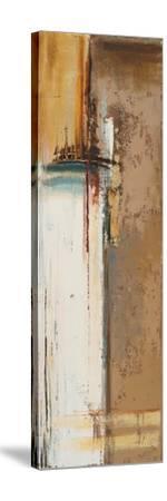 Oxido II-Patricia Pinto-Stretched Canvas Print