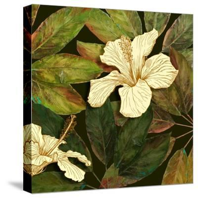 Hibiscus Leaves II-Patricia Pinto-Stretched Canvas Print