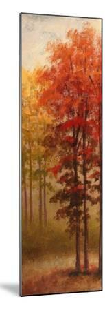 Fall Trees II-Michael Marcon-Mounted Premium Giclee Print