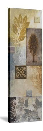 Nature in the Abstract II-Michael Marcon-Stretched Canvas Print