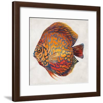 Little Fish II-Patricia Pinto-Framed Premium Giclee Print