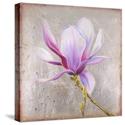 Magnolia on Silver Leaf II-Patricia Pinto-Stretched Canvas Print