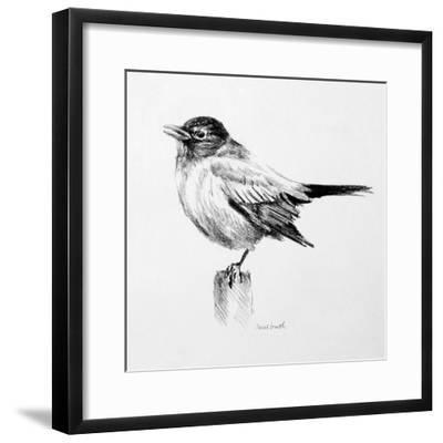 Bird Drawing III-Lanie Loreth-Framed Premium Giclee Print