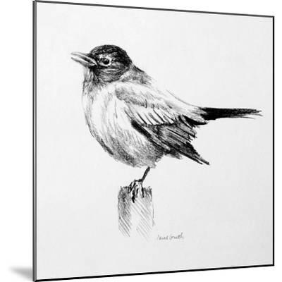 Bird Drawing III-Lanie Loreth-Mounted Premium Giclee Print