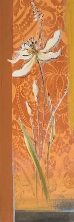 Fancy Floral II-Patricia Pinto-Framed Art Print