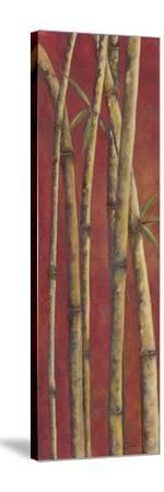 Red Bamboo II-Patricia Pinto-Stretched Canvas Print