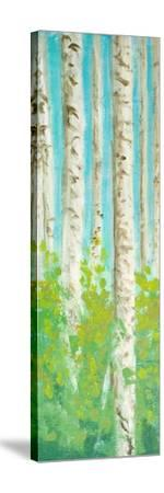 Vibrant Birchwood I-Walt Johnson-Stretched Canvas Print