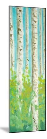 Vibrant Birchwood I-Walt Johnson-Mounted Premium Giclee Print