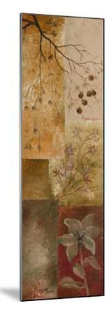 Overlapping Squares I-Elizabeth Londono-Mounted Premium Giclee Print