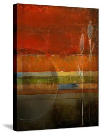 Imagination II-Patricia Pinto-Stretched Canvas Print