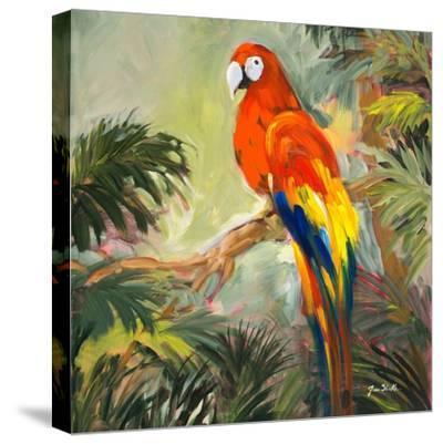 Parrots at Bay I-Jane Slivka-Stretched Canvas Print