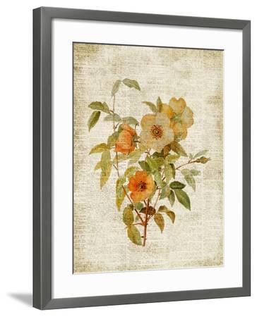 Roses on Newsprint I-Lanie Loreth-Framed Premium Giclee Print