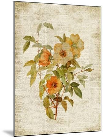 Roses on Newsprint I-Lanie Loreth-Mounted Premium Giclee Print
