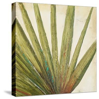 Organic II-Patricia Pinto-Stretched Canvas Print