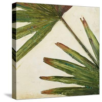 Organic III-Patricia Pinto-Stretched Canvas Print