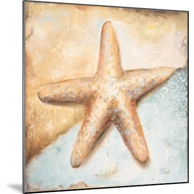 Seashell Collection II-Patricia Pinto-Mounted Premium Giclee Print