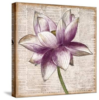 Defined Lotus I-Patricia Pinto-Stretched Canvas Print