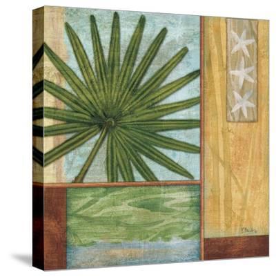 La Palma III-Paul Brent-Stretched Canvas Print
