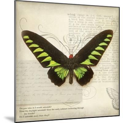 Butterflies Script VI-Amy Melious-Mounted Art Print