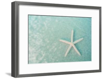 Starfish II-Roberta Murray-Framed Art Print