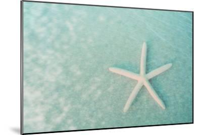 Starfish II-Roberta Murray-Mounted Art Print
