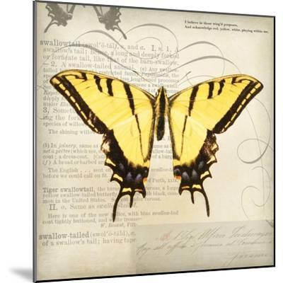 Butterflies Script V-Amy Melious-Mounted Premium Giclee Print