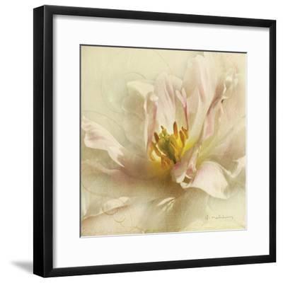 Ivory Romance II-Amy Melious-Framed Art Print