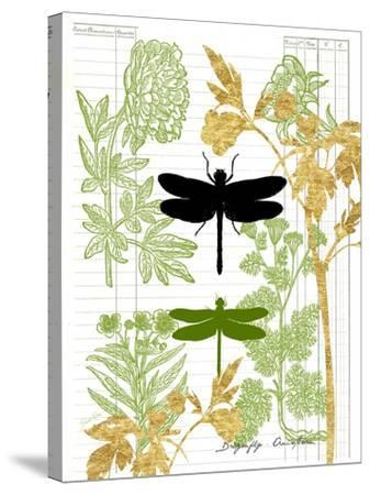 Garden Botanicals & Dragonflies-Devon Ross-Stretched Canvas Print