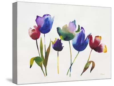 Rainbow Tulips 2-Paulo Romero-Stretched Canvas Print