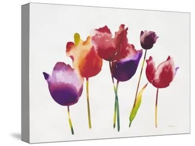 Rainbow Tulips 1-Paulo Romero-Stretched Canvas Print