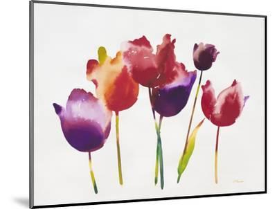 Rainbow Tulips 1-Paulo Romero-Mounted Premium Giclee Print