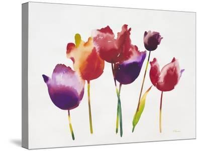 Rainbow Tulips 1-Paulo Romero-Stretched Canvas Print