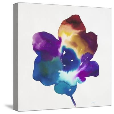 Rainbow Flower-Paulo Romero-Stretched Canvas Print