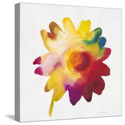 Rainbow Daisy 1-Paulo Romero-Stretched Canvas Print