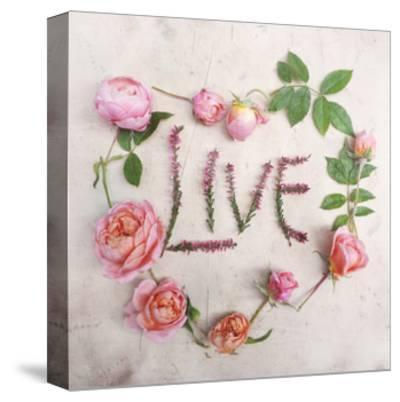 Flower For Live-Heather Johnston-Stretched Canvas Print