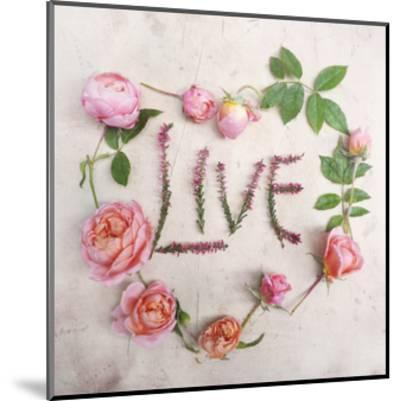 Flower For Live-Heather Johnston-Mounted Art Print