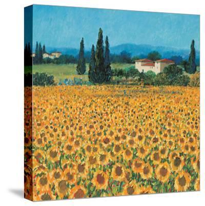 Farm Near Siena-Hazel Barker-Stretched Canvas Print
