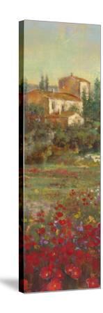 Provencal Village VI-Michael Longo-Stretched Canvas Print