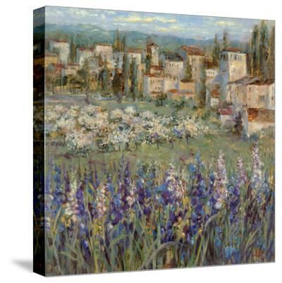 Provencal Village I-Michael Longo-Stretched Canvas Print