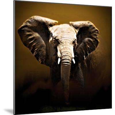 On Safari-Bobbie Goodrich-Mounted Art Print