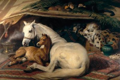 The Arab Tent, 1866-Edwin Henry Landseer-Stretched Canvas Print