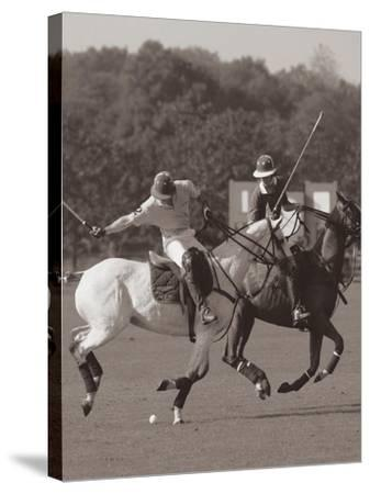 Polo In The Park I-Ben Wood-Stretched Canvas Print
