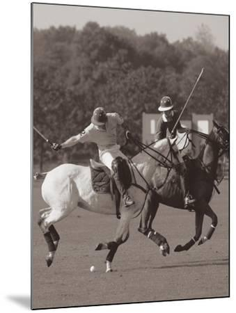 Polo In The Park I-Ben Wood-Mounted Premium Giclee Print