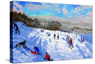 Snow Flurries, Allestree Park, Derby-Andrew Macara-Stretched Canvas Print