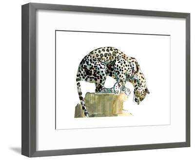 Spine (Arabian Leopard), 2015-Mark Adlington-Framed Giclee Print