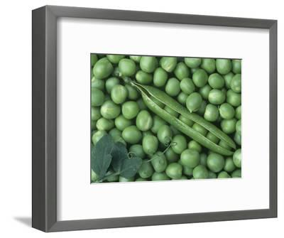 Peas, Frosty-Wally Eberhart-Framed Premium Photographic Print